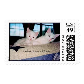 Franqueo turco de los gatitos del angora timbre postal