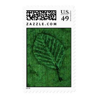 Franqueo verde del fósil de la hoja