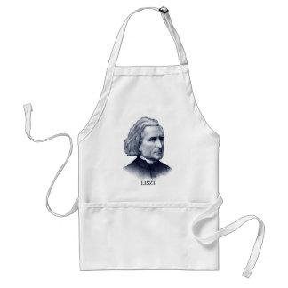 Franz Liszt azul Delantales