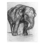 Franz Marc- Elephant Postcard
