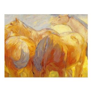 Franz Marc- Large Lenggries Horses Post Card
