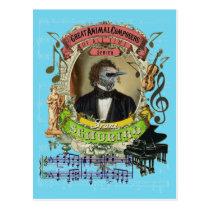 Franz Schubird Funny Bird Animal Composer Schubert Postcard
