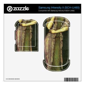 Franz von Stuck - The beautiful Helena Samsung Intensity Skins