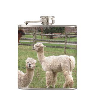 Frasco del ~ de la mezcla de la alpaca
