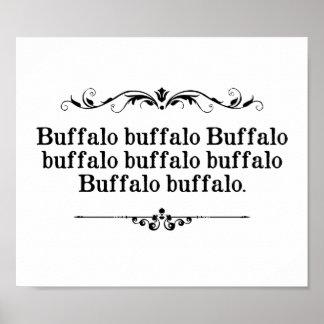 Frase del búfalo del búfalo póster
