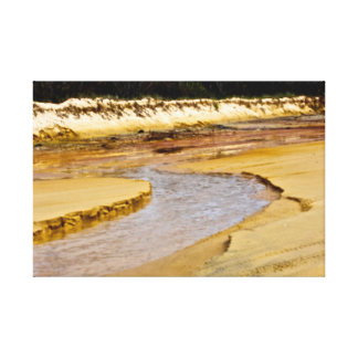 Fraser Island- 4wd driving Canvas Prints