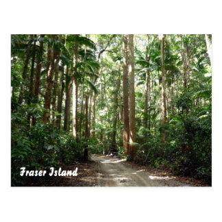 fraser rainforest postcard