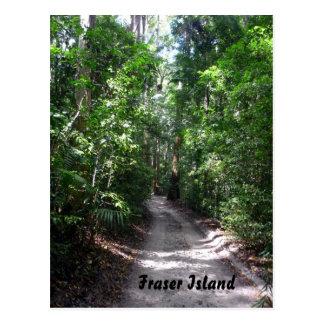 fraser rainforest track postcard