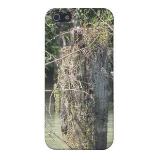 Fraser River Case Case For iPhone 5