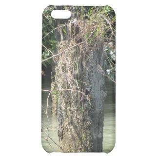 Fraser River Case iPhone 5C Case