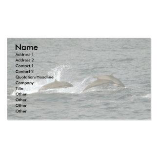 Fraser's dolphin business card