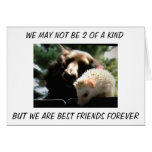 """FRATERNAL TWINS"" WE ARE BEST FRIENDS FOREVER GREETING CARD"