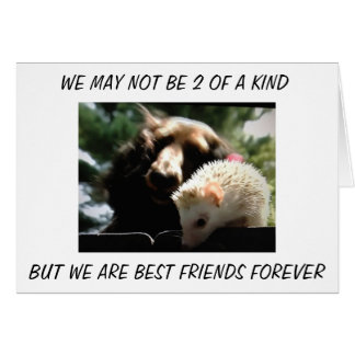 """FRATERNAL TWINS"" WE ARE BEST FRIENDS FOREVER CARD"