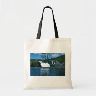 Frazer Lake Fish Ladder and Falls Tote Bags
