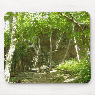 Frazier Discovery Trail at Shenandoah Mouse Pad