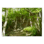 Frazier Discovery Trail at Shenandoah Photography Card