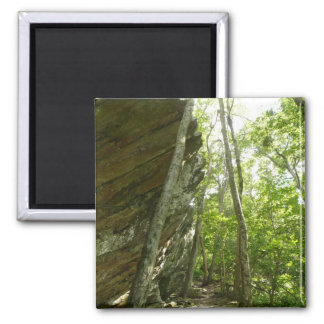 Frazier Rock Wall in Shenandoah National Park Magnet
