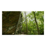 Frazier Rock Wall in Shenandoah National Park Poster