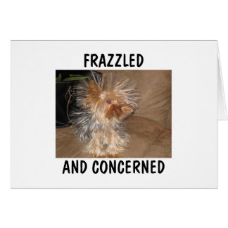 FRAZZLED AND CONCERNED GREETING CARD