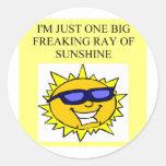 freaking ray of sunshine classic round sticker