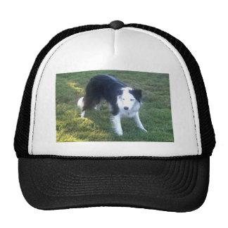 Freckles Cap Trucker Hat