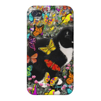 Freckles in Butterflies I, Tux Kitty Cat iPhone 4 Case