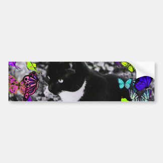Freckles in Butterflies II - Black & White Tux Cat Bumper Sticker