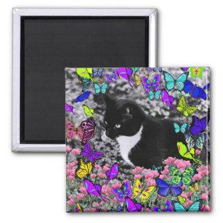 Freckles in Butterflies II - Black & White Tux Cat Magnet