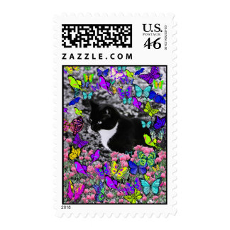 Freckles in Butterflies II - Black White Tux Kitty Postage Stamp