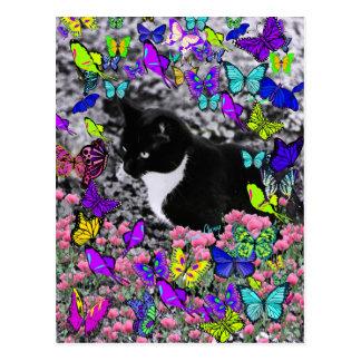 Freckles in Butterflies II - Tux Kitty Cat Postcard