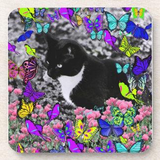 Freckles in Butterflies II - Tuxedo Cat Coaster