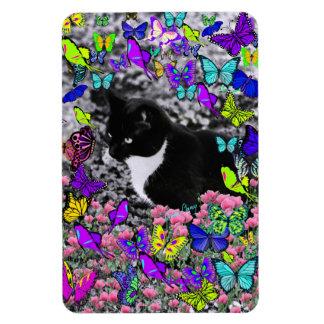 Freckles in Butterflies II - Tuxedo Cat Magnet
