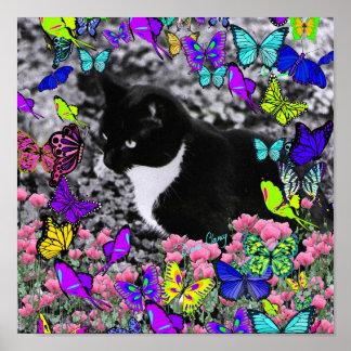 Freckles in Butterflies II - Tuxedo Cat Poster