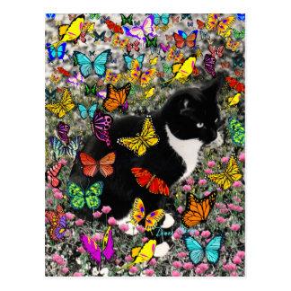 Freckles in Butterflies - Tux Kitty Cat Postcard