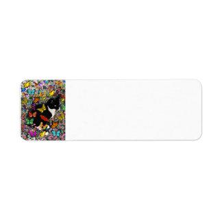 Freckles in Butterflies - Tuxedo Kitty - full Label
