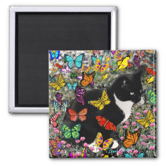 Freckles in Butterflies - Tuxedo Kitty 2 Inch Square Magnet