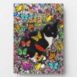 Freckles in Butterflies - Tuxedo Kitty Plaques