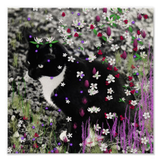 Freckles in Flowers I - Black and White Tux Cat Poster
