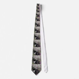 Freckles in Flowers I - Black and White Tuxedo Cat Tie
