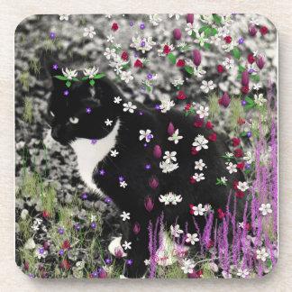 Freckles in Flowers I - Black White Tuxedo Kitty Beverage Coaster