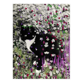 Freckles in Flowers I - Tux Cat Postcard
