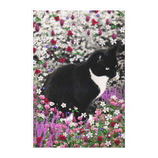 Freckles in Flowers II - Black and White Kitty Canvas Print