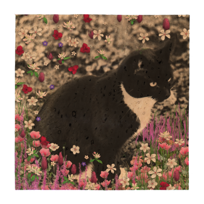 Freckles in Flowers II, Black and White Tuxedo Cat Coasters