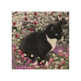 Freckles in Flowers II, Black and White Tuxedo Cat Wood Wall Art
