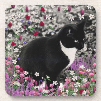 Freckles in Flowers II - Black White Tuxedo Cat Coaster