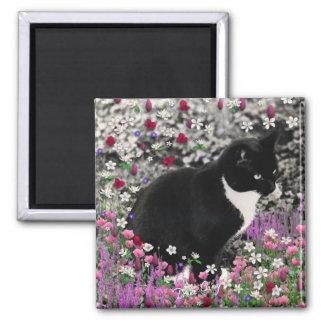 Freckles in Flowers II Magnet - Tuxedo Cat