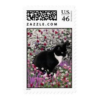 Freckles in Flowers II Postage - Tuxedo Cat