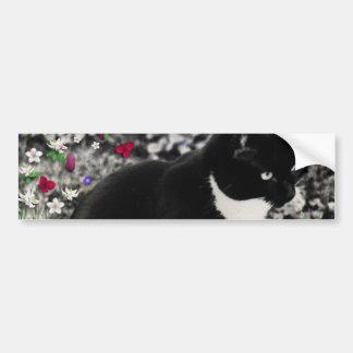 Freckles in Flowers II - Tuxedo Cat Car Bumper Sticker