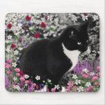 Freckles in Flowers II - Tuxedo Cat Mousepads