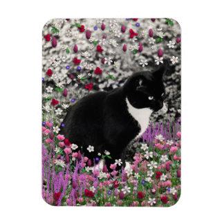Freckles in Flowers II - Tuxedo Kitty Cat Magnet